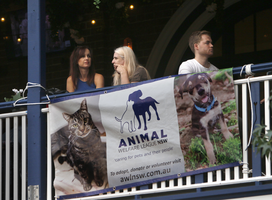 A banner of Animal Welfare League NSW hung up on a bar
